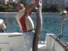 pesca24