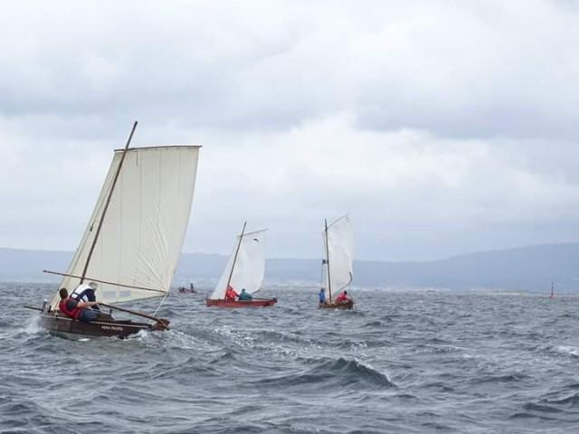 regata11